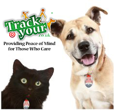 Dog and Cat Wearing Radio Tracking Tag