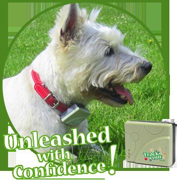 GPS Tracker for Pet Dog UK TY201-2 TK201-2